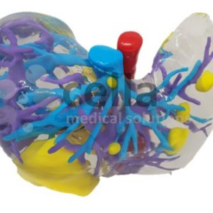 MODELO 3D IMPRESO HPB ESTANDAR PIEZA